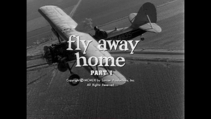 Fly Away Home, Part 1