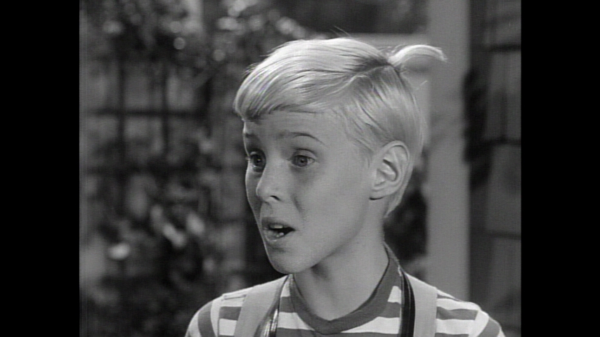 Dennis The Menace: S3 E25 - Dennis' Documentary Film