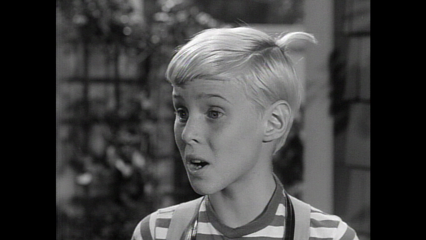 Dennis The Menace: Dennis' Documentary Film