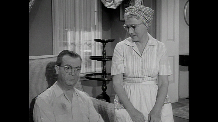 Dennis The Menace: Mr. Wilson's Housekeeper