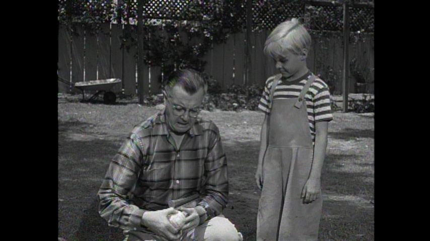 Dennis The Menace: Dennis and the Signpost