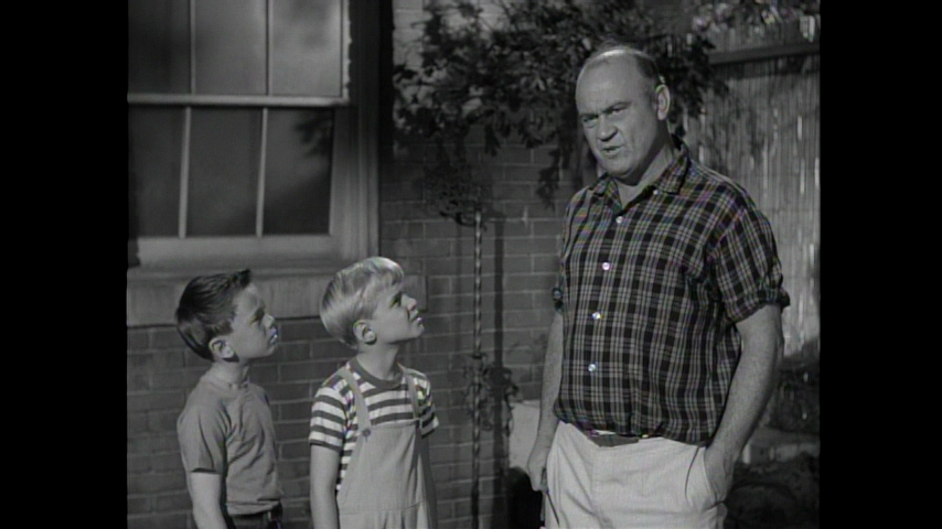 Dennis The Menace: S1 E25 - Dennis And The Bees