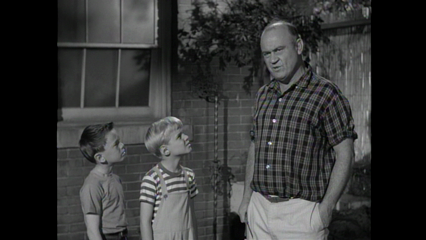 Dennis The Menace: Dennis and the Bees