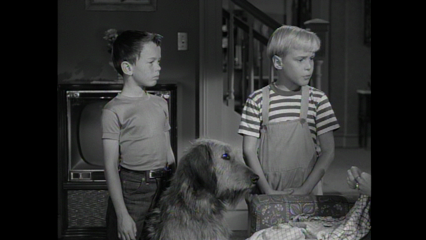 Dennis The Menace: S1 E20 - Dennis And The Dog