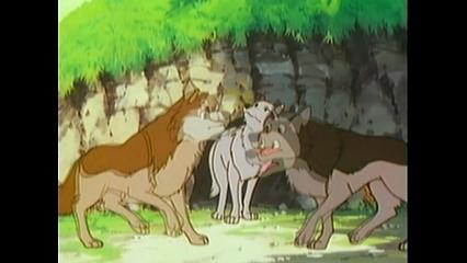 The Birth Of Wolf-Boy Mowgli/Mowgli Comes To The Jungle (Part 2)